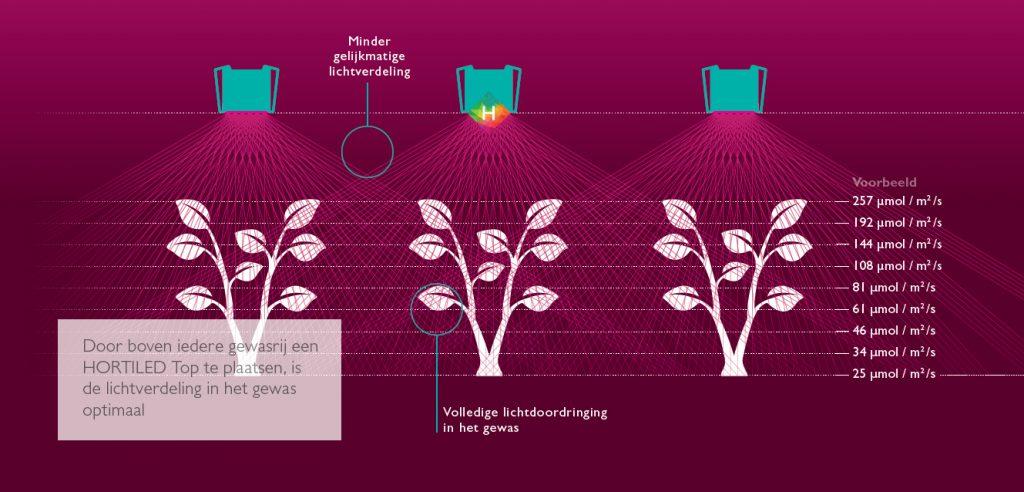 Ideale lichtverdeling Hybride led